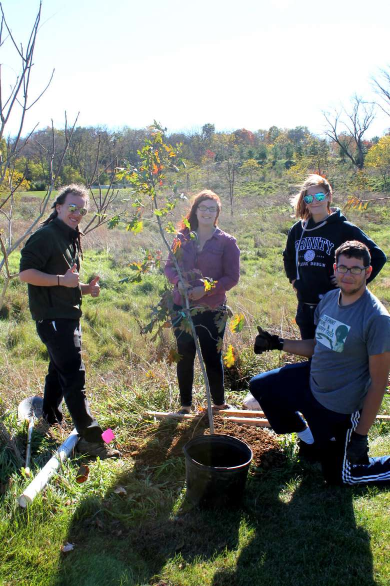 Trees that were planted are sycamore, pin oak, white oak, serviceberry, and eastern redbud.