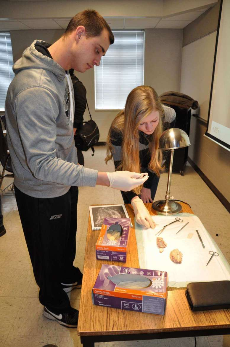 Psychology majors Michael Brown, of Brandywine, Maryland, and Leonie Middeke, of Charles Town, take Dr. Christopher Lovelace up on his offer to handle the dissected sheep's brain.