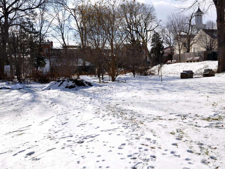 Winter view of garden.