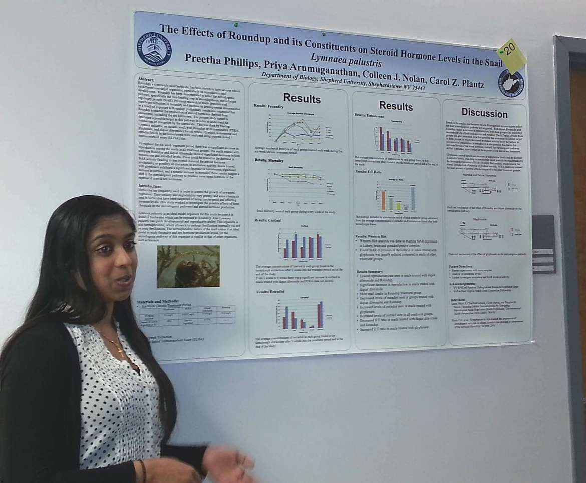 "Preetha Phillips, a biology major from Merrick, New York, won honorable mention in the undergraduate poster presentation category during the 91st annual meeting of the West Virginia Academy of Sciences for her work titled ""The Effects of Roundup and its Constituents on Steroid Hormone Levels in the Snail Lymnaea palustris."""