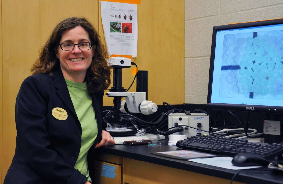 Dr. Clarissa Mathews, chair of Shepherd's Institute of Environmental and Physical Sciences.