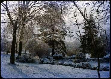Winter 1950-51