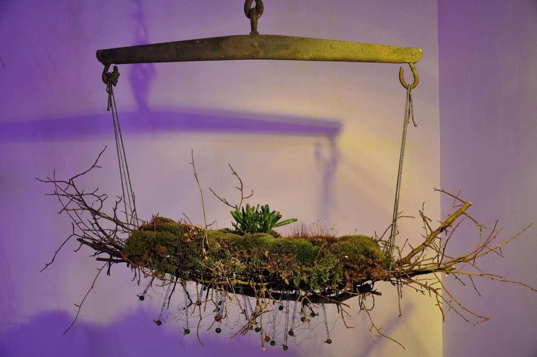 "Evanisko created a Japanese kokedama exhibit  ""Like Moss Between the Cracks"" in the Center for Contemporary Arts II, Phaze 2 Gallery, January 2016."