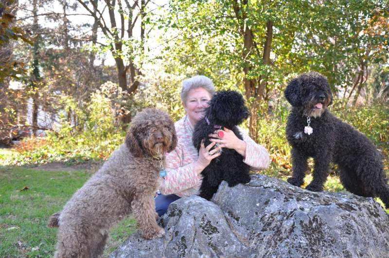 Dr. Colleen Nolan, Dean of the School of Natural Sciences and Mathematics, and her three Spanish water dogs