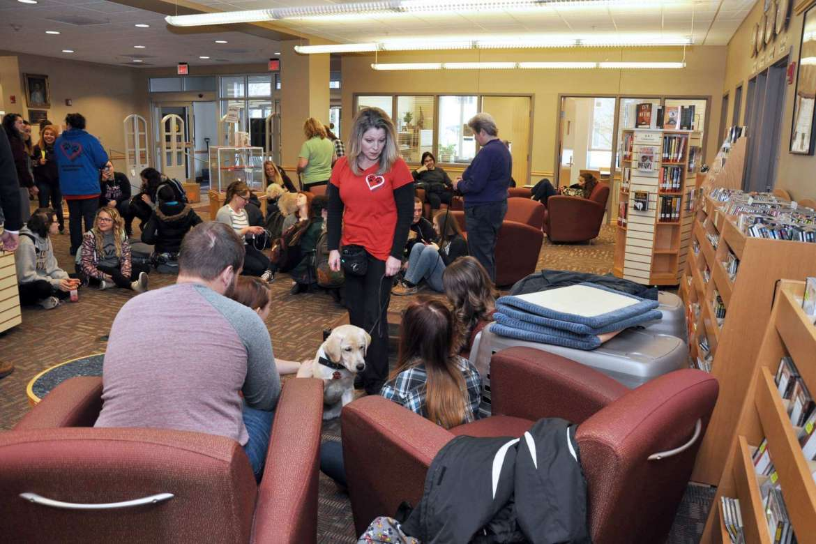 Students crowded into the Scaborough Library to relieve some final exam stress by petting puppies from PurposFULL Paws, a nonprofit organization located in Bunker Hill that trains diabetic alert, mobility, autism service, and hearing dogs.