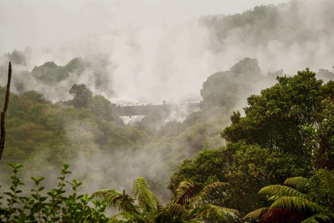 Wow: Geothermal Valley in Rotorua, New Zealand, photo by Jenna Sterner.