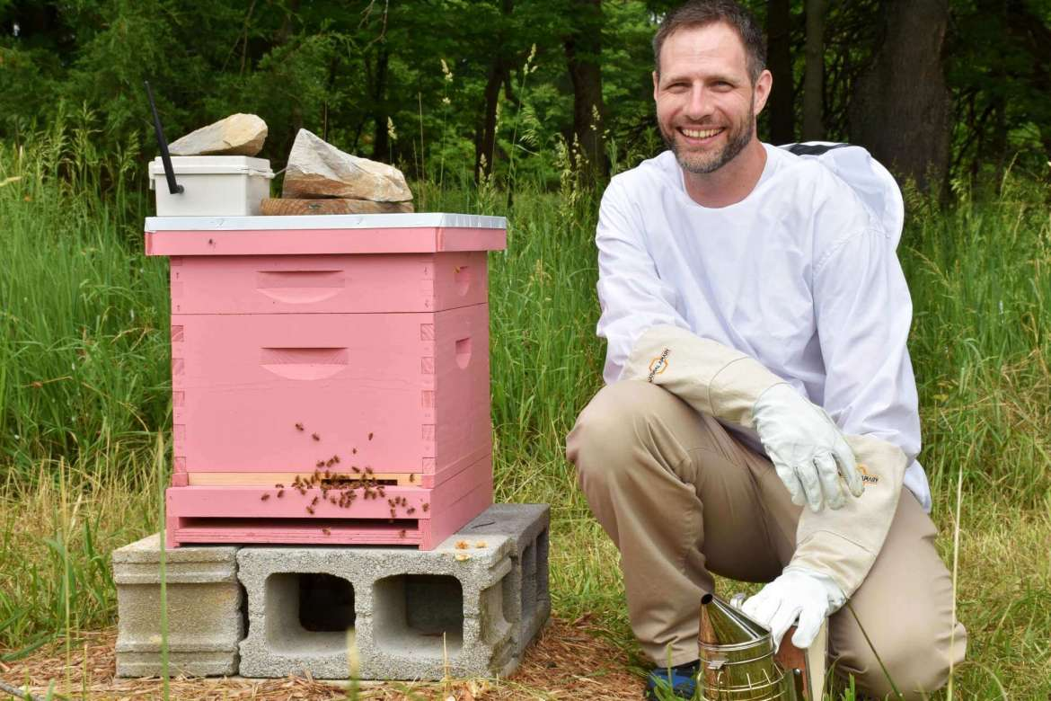 Dr. Jeff Groff, chair of the Institute of Environmental and Physical Sciences, has established two bee colonies with frames embedded with temperature sensors designed to transmit information on how the bees are doing.