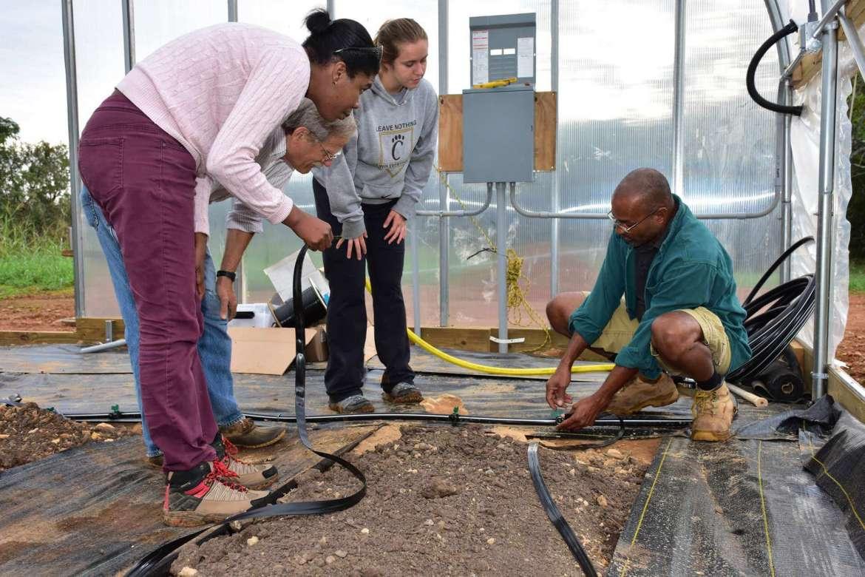 Guirlene Altidor, Wayne Braunstein, and Carley Murray learn how to install an irrigation hose in the hoop house.