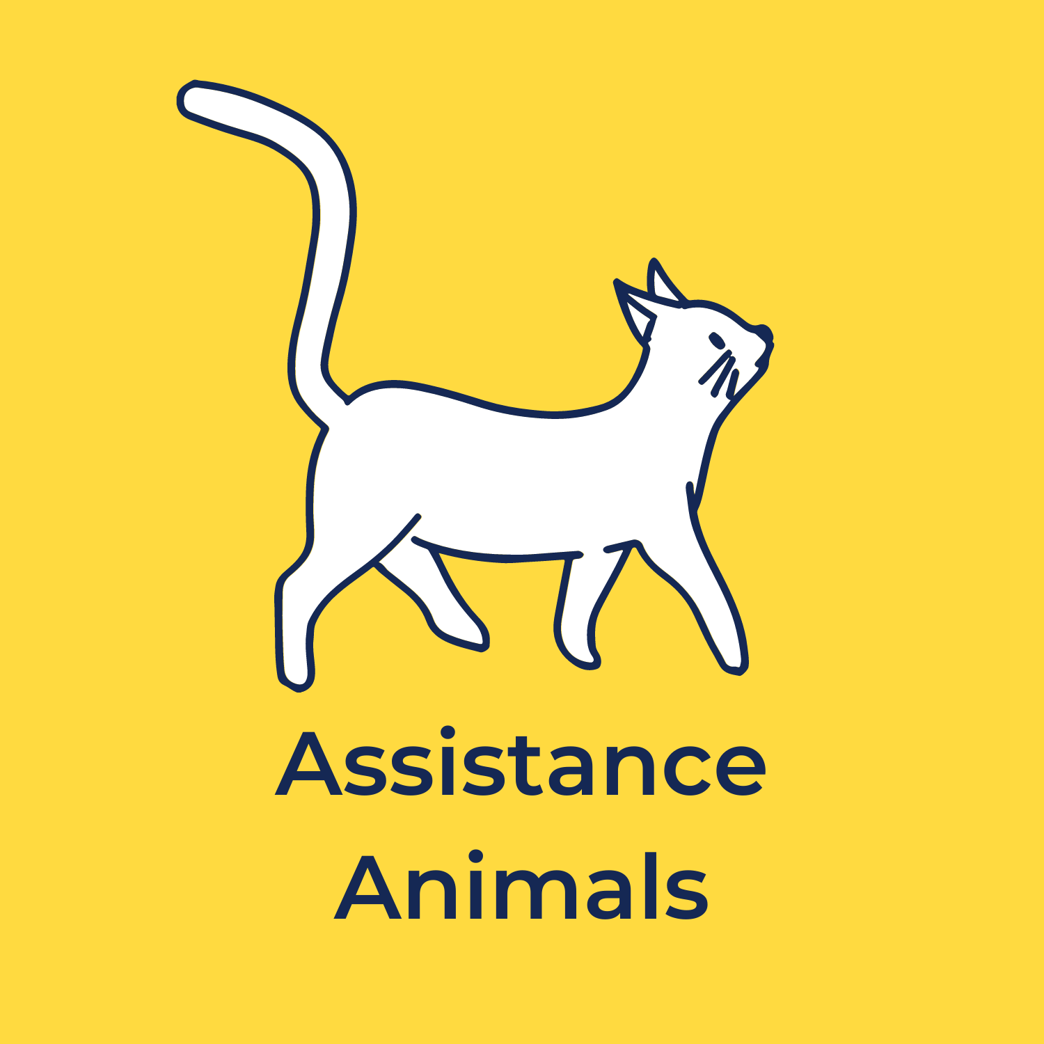 """yellow background. in the center of the image is a drawing of a white cat. underneath in navy blue reads """"assistance animals"""""""