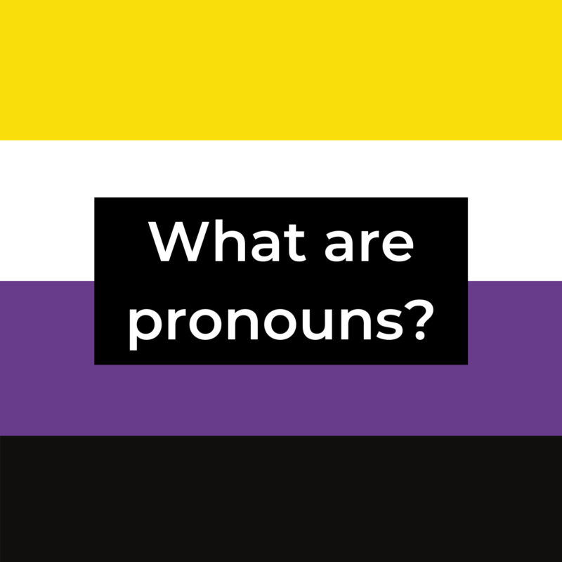 """background is non-binary pride flag, in the center is a black rectangle reads """"what are pronouns?"""""""