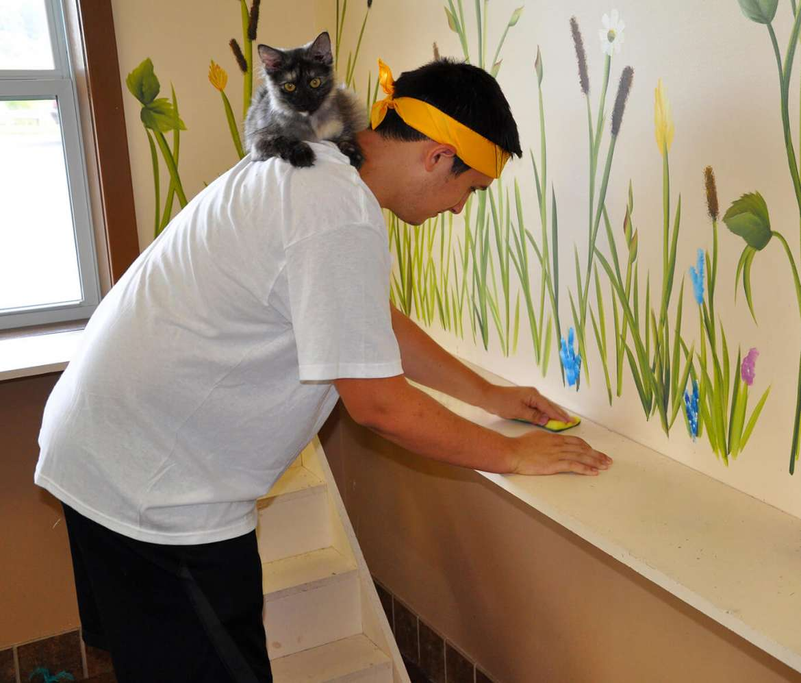 Hunter Cutlip cleaned the cat room with a feline friend riding on his shoulders.